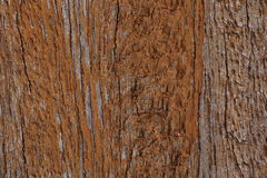 Wood wall texture (Damaged) Stock Images