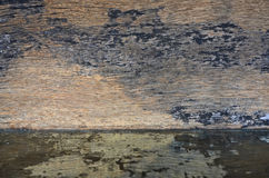 Wood wall texture and reflection. Black and brown wood wall texture and reflection Royalty Free Stock Images