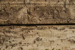 Wood, Wall, Tree, Trunk Royalty Free Stock Images