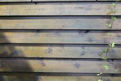 Wood, Wall, Wood Stain, Plank stock photography