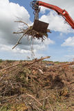 Wood waste being loaded Royalty Free Stock Images