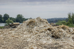 Wood Waste 2 Royalty Free Stock Photography