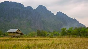 Wood watch's house on the empty rice field. Laos Stock Image