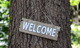 Wood welcome sign hanging on tree in forest Stock Images
