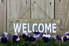 Wood welcome sign with purple flowers (pansies) Stock Photography