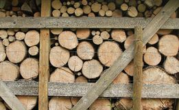 Wood for the winter. Stock Image