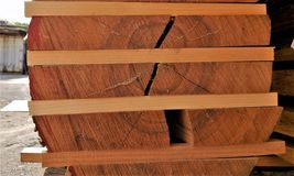 Wood, Wood Stain, Lumber, Hardwood royalty free stock photo