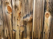 Wood, Wood Stain, Trunk, Lumber royalty free stock photos
