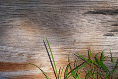 Wood. En background covered with grass Royalty Free Stock Image