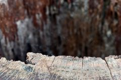 Wood. En table top background with near-term focus on distant blur Royalty Free Stock Image