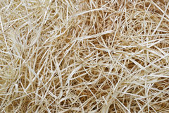 Wood wool. Wood slivers, cut from logs, mainly used in packaging Royalty Free Stock Photos