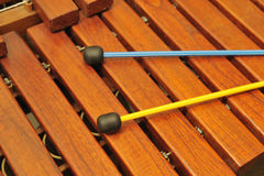 Wood xylophone and mallets. A photo close up. Original color Stock Photos