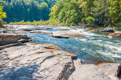 Woodall Shoals Royalty Free Stock Image