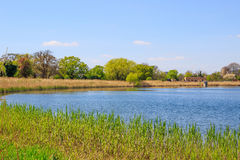 Woodberry Wetland in London. Newly-opened Woodberry wetlands nature reserve at Woodberry Down in London on a sunny day royalty free stock photo