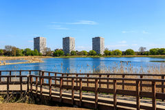 Woodberry Wetland in London Royalty Free Stock Images