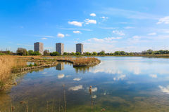 Woodberry Wetlands in London in London. Newly-opened Woodberry wetlands nature reserve at Woodberry Down in London on a sunny day stock image