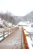Woodbridge Jigokudani в Noboribetsu Onsen в зиме Хоккаидо, Японии Стоковые Изображения RF