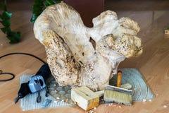 Woodcarving, natuurlijke stomp, kostbaar hout, kunstvoorwerp voor het verfraaien van huis Concept met de hand gemaakt, profession Royalty-vrije Stock Fotografie