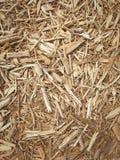 Woodchip σύσταση Στοκ Εικόνα