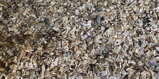 Woodchip Royalty Free Stock Photography