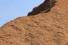 Woodchip Mountain Close up Royalty Free Stock Photos