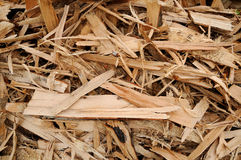 woodchips Royaltyfri Bild