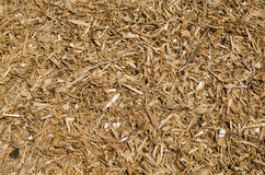 Woodchips background Stock Photos
