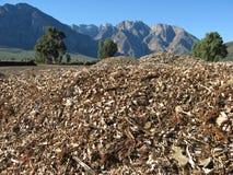 Woodchips e montanhas imagem de stock