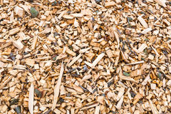 Woodchips after harvesting and shredding trees Stock Image