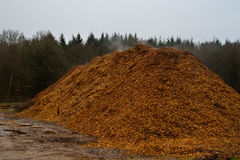 Woodchips Stock Images