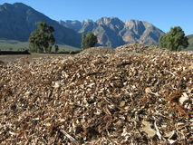 Woodchips and mountains Stock Image