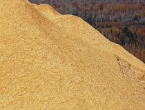 Woodchips Sawdust Pile Autumn Colors Royalty Free Stock Photo