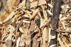 Woodchips texture Royalty Free Stock Photography