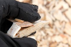 Woodchips in a Woman's Hand Royalty Free Stock Images