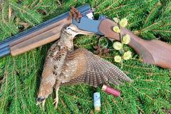 Woodcock z łowieckimi atrybutami Obrazy Stock
