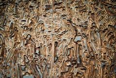 woodcut Стоковое фото RF