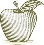 Woodcut Apple. Woodcut style illustration of an apple Stock Photos