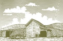 Woodcut Barn Yard. A woodcut-style illustration of a cow grazing in a barn yard Stock Photography