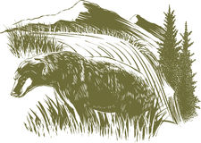 Woodcut Bear Scene. Woodcut-style illustration of a bear with mountains in the background Stock Photo