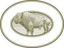Woodcut Bison Label. A label featuring a woodcut style illustration of a bison Royalty Free Stock Images
