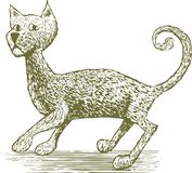 Woodcut Cat Drawing. Woodcut-style illustration of a spooked cat Royalty Free Stock Photos