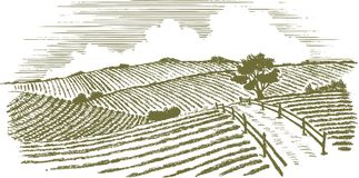 Woodcut Countryside. Woodcut style illustration of a country scene Royalty Free Stock Images