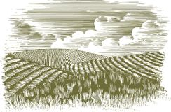 Woodcut Farm Fields. Woodcut-style illustration of rolling hills of fields Stock Photos