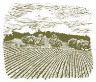 Woodcut Farm on Highway 60 Royalty Free Stock Images