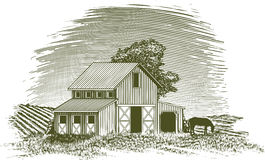 Woodcut Horse Barn. Woodcut-style illustration of a barn with a horse grazing nearby Stock Images