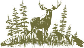 Woodcut Moose Design. Woodcut-style illustration of a moose with trees and mountains in the background Royalty Free Stock Photo