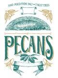 Woodcut Pecan Label Stock Image