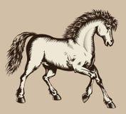 Woodcut Prancing do cavalo Foto de Stock Royalty Free