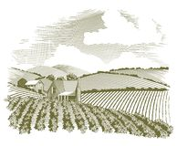 Woodcut Rural Farm House. Woodcut style illustration of a rural farm house with fields of crops surrounding it Stock Image