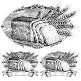 Woodcut style bread and wheat label Stock Image